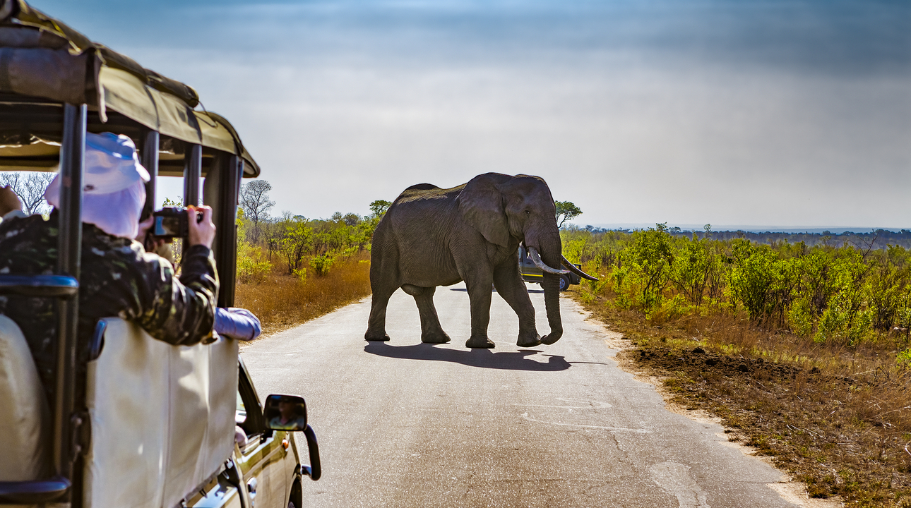 8 Day Essential South Africa Tour – Save $350pp
