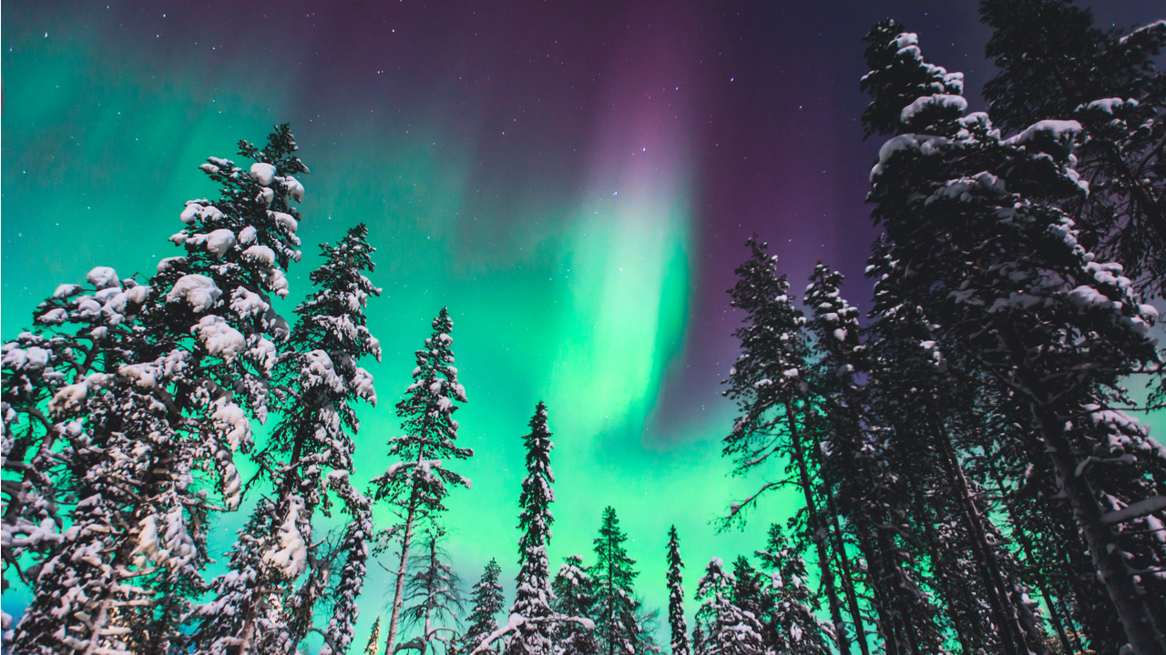 5 Day Northern Lights & Iceland Tour