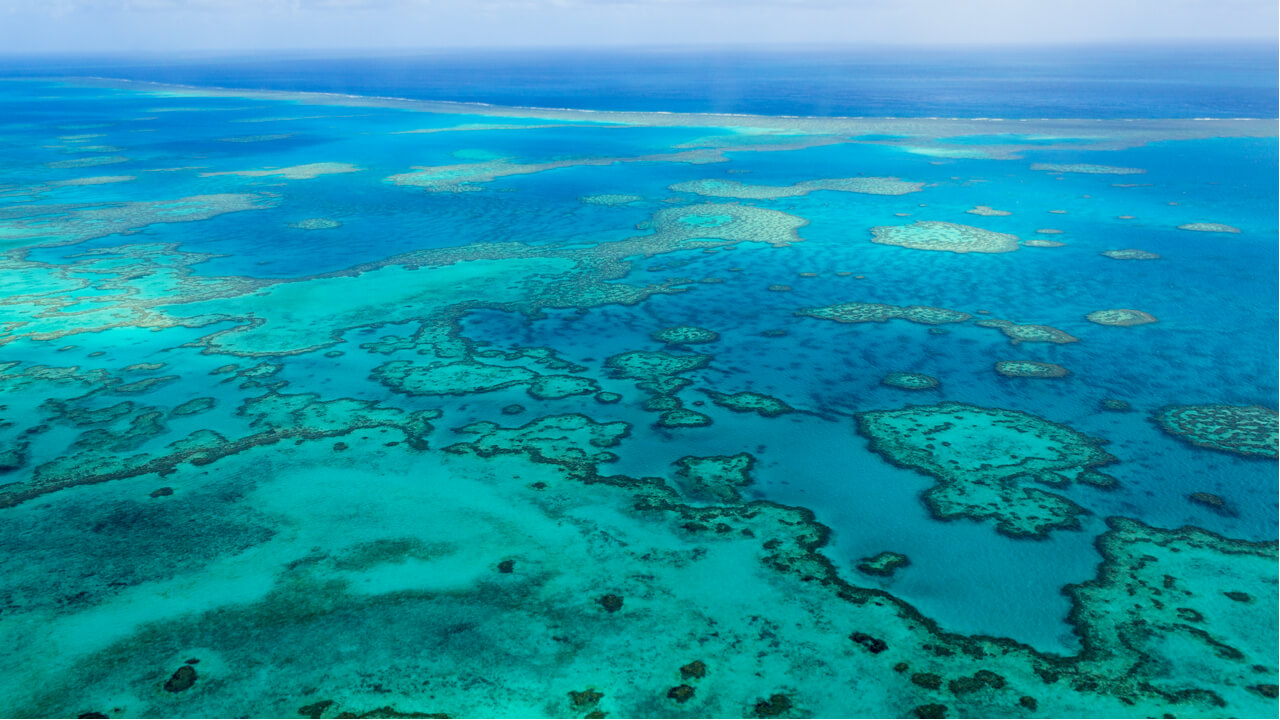 7 Night Great Barrier Reef Discovery Cruise
