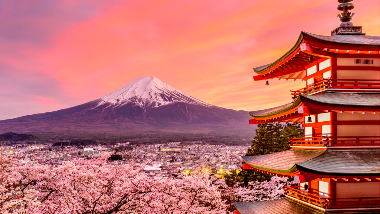 11 Day Japan Discovery Solo Tour
