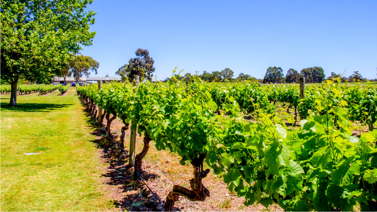 3 Day Perth to Margaret River Tour