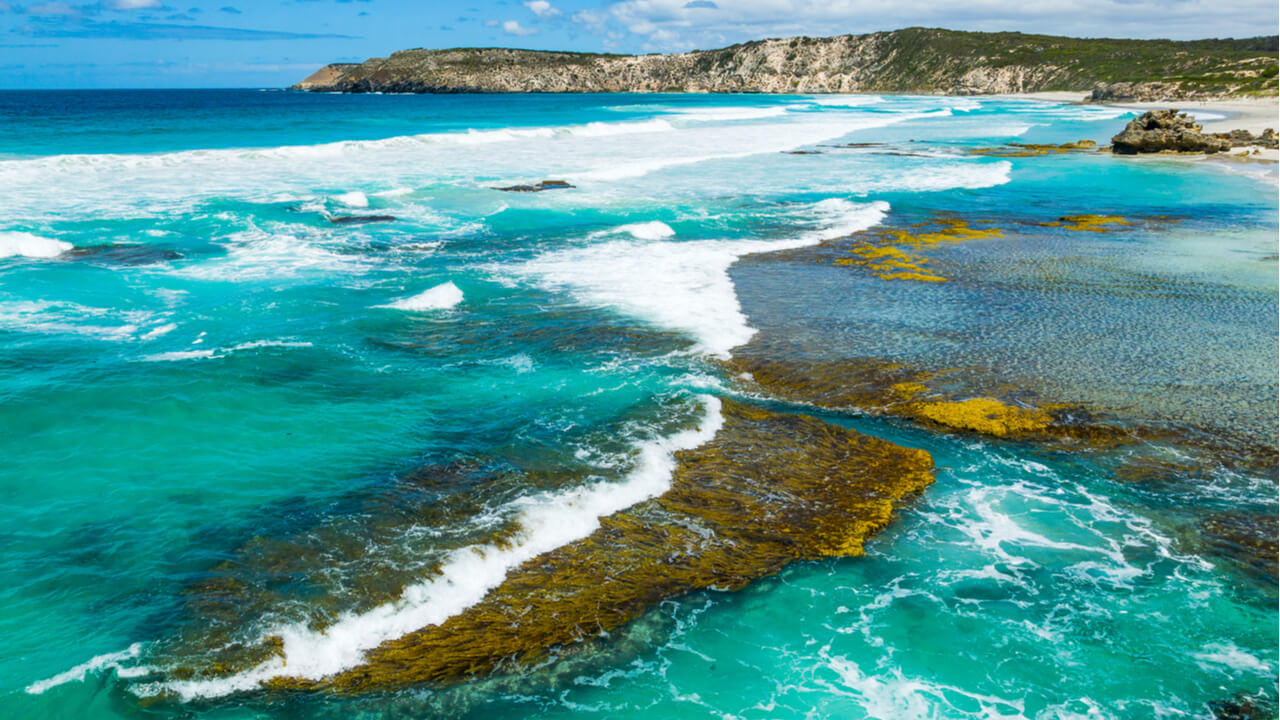6 Day Ultimate Kangaroo Island Tour