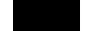 VERTINI