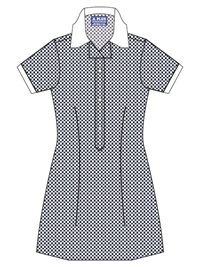 FITZ 20914C  GINGHAM CHECK SCH