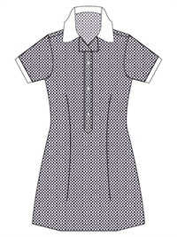 TTWN 20914C  GINGHAM CHECK SCH