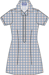 WNPS 20917C  SUMMER CHECK DRES