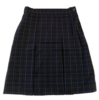 STMM 21179C  WINTER PLEATED SK