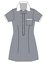 WALR 20914C  GINGHAM CHECK SCH