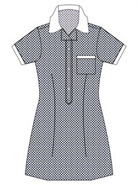 BSWN 20914C  GINGHAM CHECK SCH