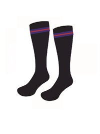 SHOL 017  SOCKS - KNEE HIGH WI