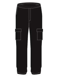 CWST 02541  PV CARGO PANT
