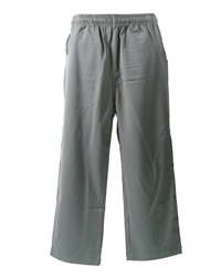 0210C  TWILL PANTS (IMPORT)