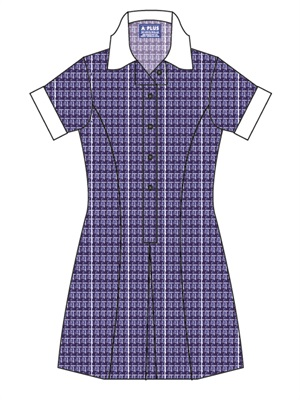 MOTE 20190C  SUMMER CHECK DRES