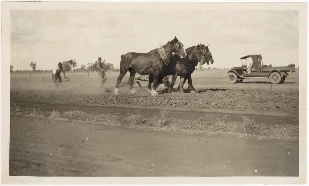 L10 - [Photograph from Main Roads Board album - horses ploughing]