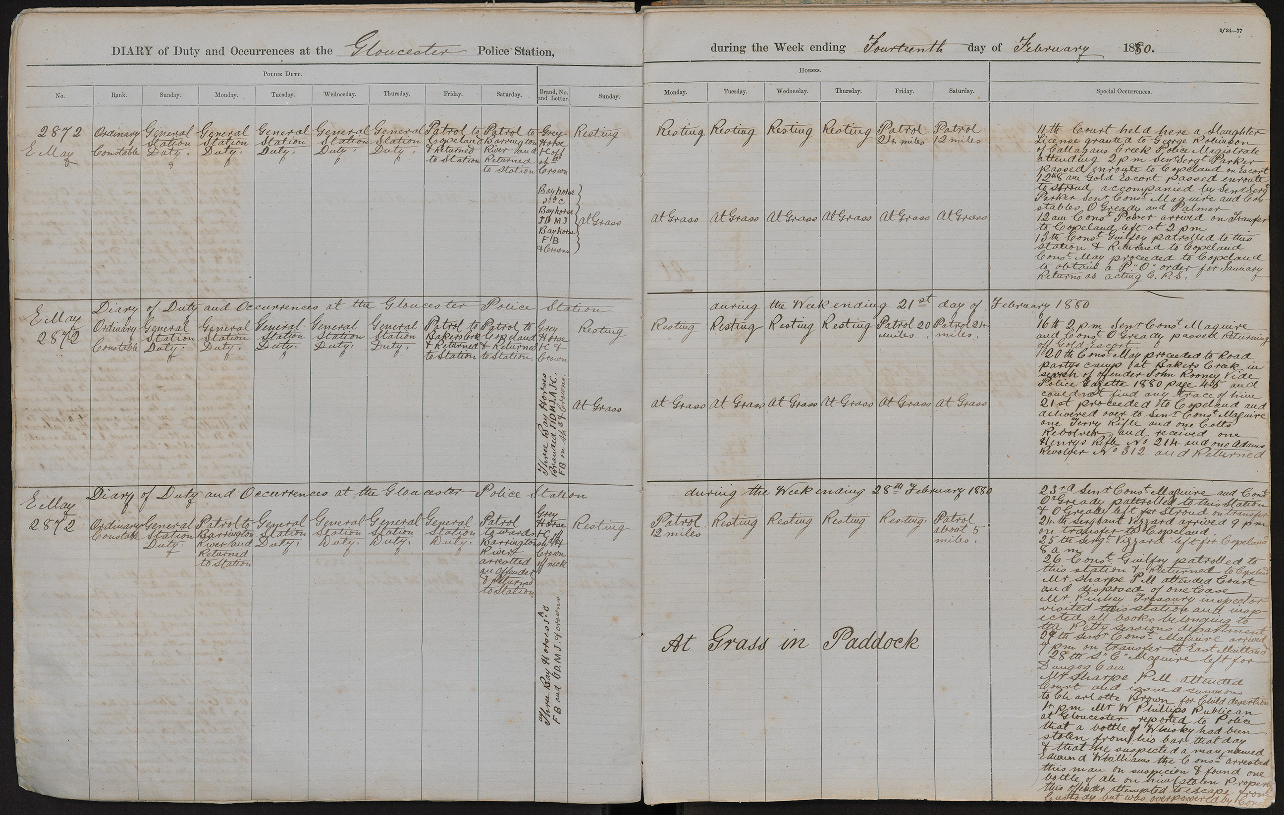 Diary of duty and occurrences at the Gloucester Police Station during the week ending the 14th day of February 1880