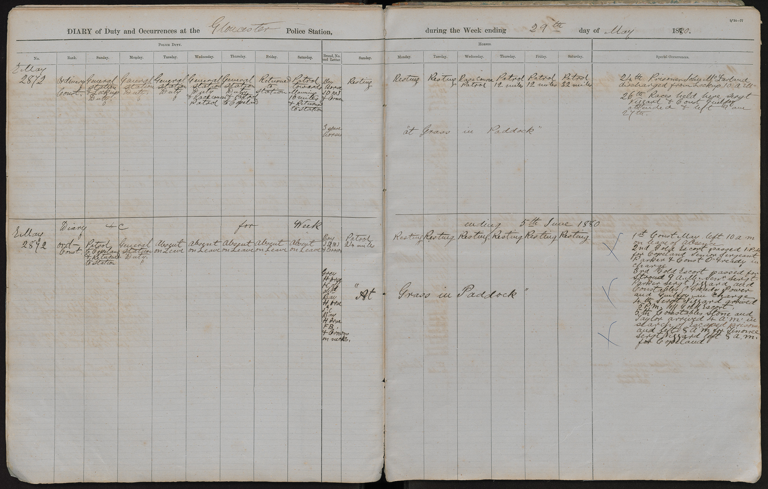 Diary of duty and occurrences at the Gloucester Police Station during the week ending the 29th day of May 1880