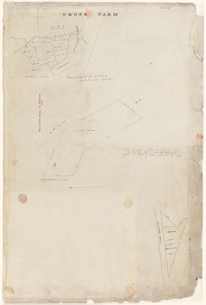Sydney Alexandria Parish - Grose Farm Smith and Barkers allotment of 5 acres 1 rod 0 perches [Sketch book 1 folio 7A]