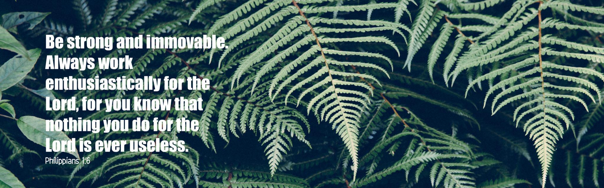 NZ-bibleslide-Philippians-1.6