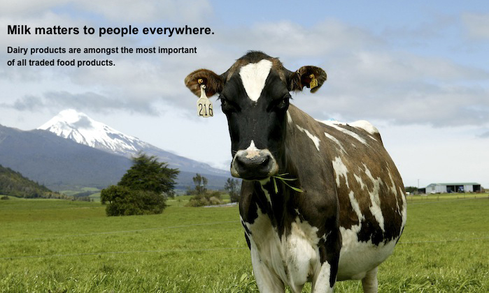 Dairy derivatives overview - NZX Group - NZX, New Zealand's