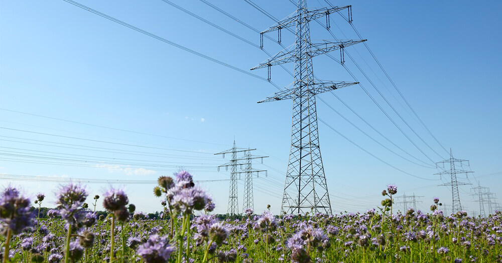 An Electrician pre-apprenticeship course will teach you about Electricity pylons