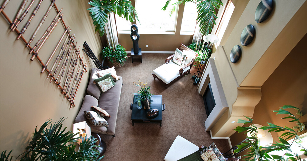 Aerial View Of Ways To Interior Decorate With Plants In Living Room