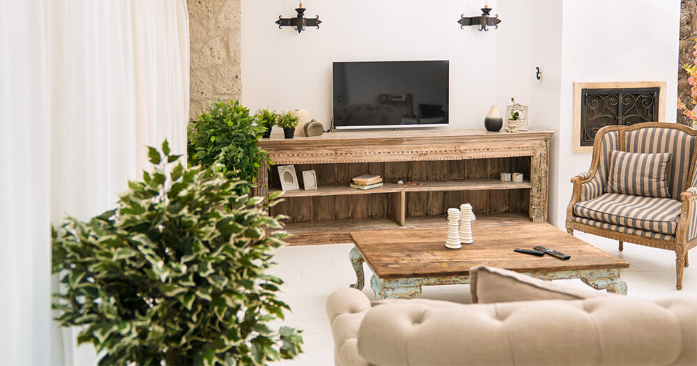 Living room and television softened with plants