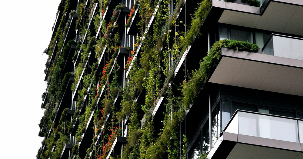 Vertical garden, green wall and living wall on a building