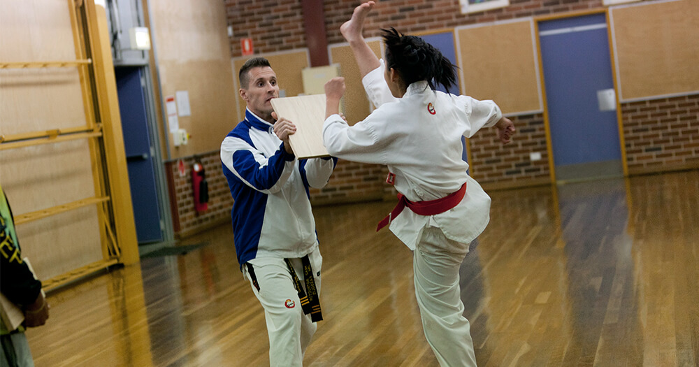 Professional fitness trainer - taekwondo training