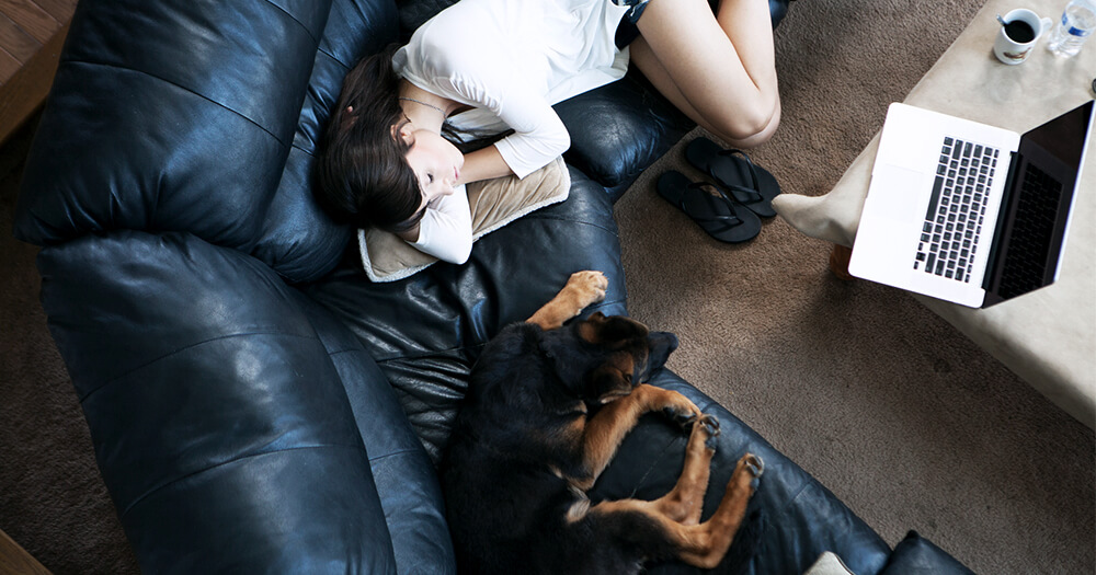 Why do we dream? Female and her pet dog, fast asleep on the couch