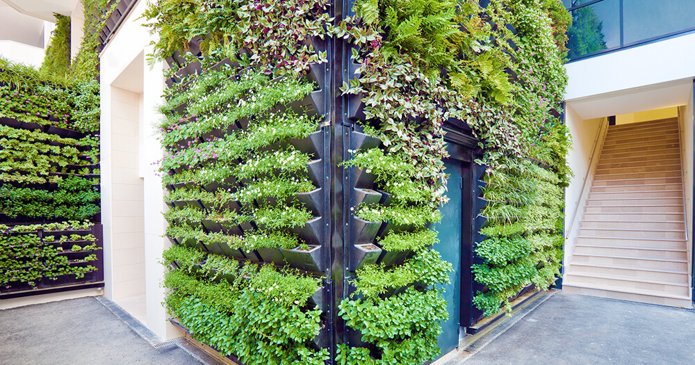 Green living wall and vertical garden in office building interior