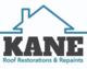 Kane Repaint