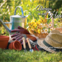 Lifestyle Gardening Out Copy
