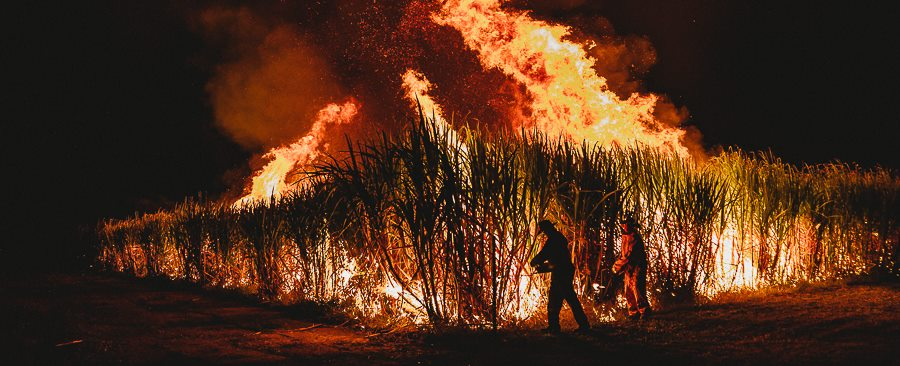 Burdekin cane fire by Madison Magetelli