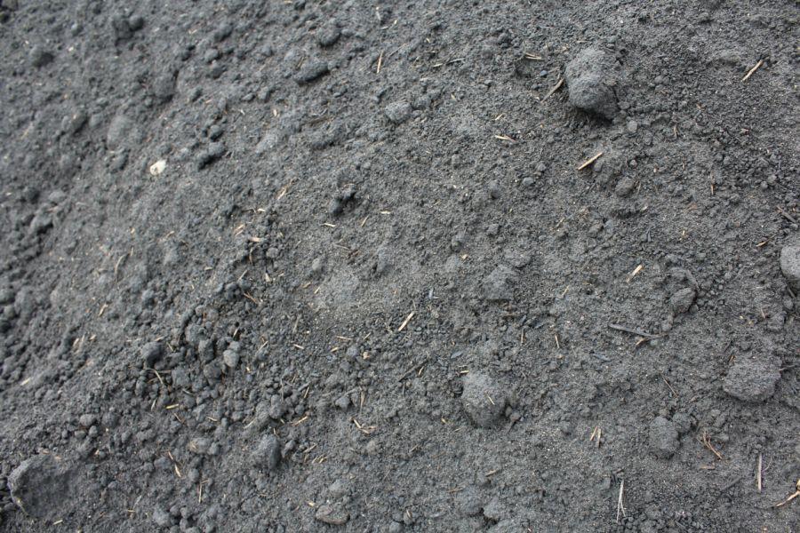 Mill Mud Bedrock Landscape Centre Townsville