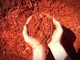 Red Dyed Woodchip