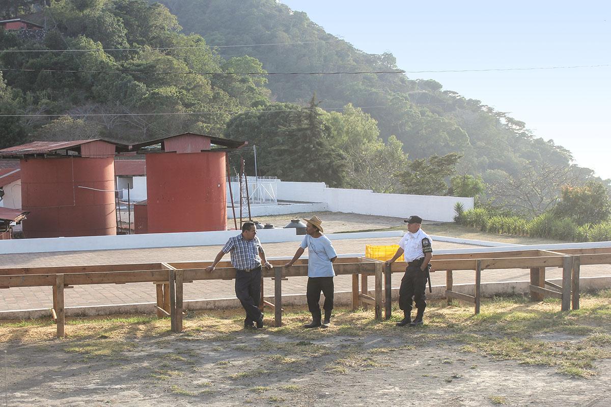 Los Pirineos Farm - El Salvador