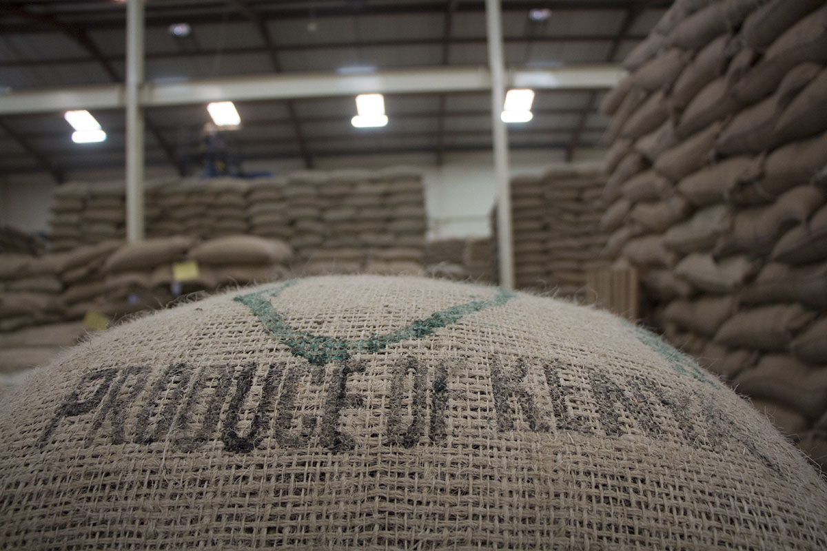 Kenyan Coffee Bags Ready For Shipping