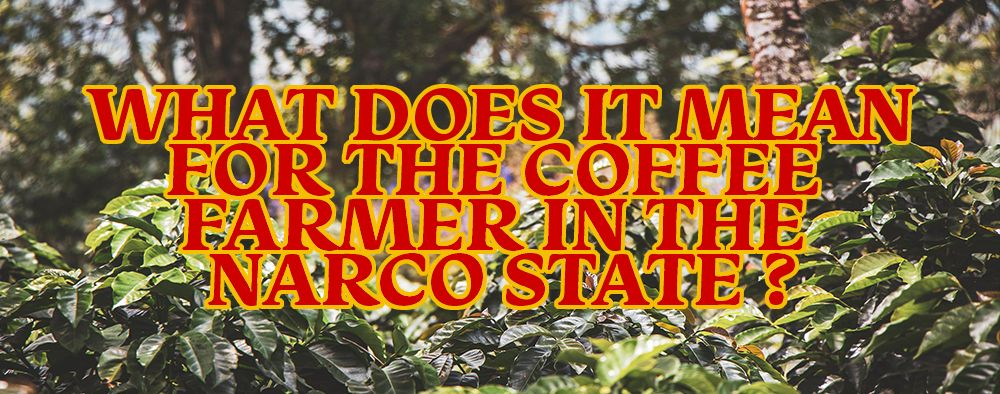 What Does It Mean For The Coffee Farmer In The Narco State?