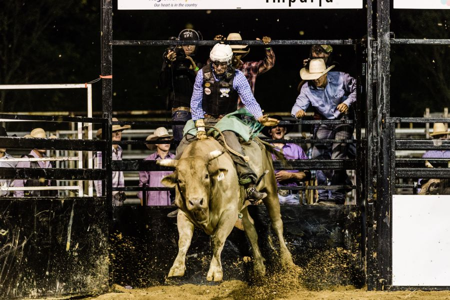 Bucking Brazillian Bull Riders