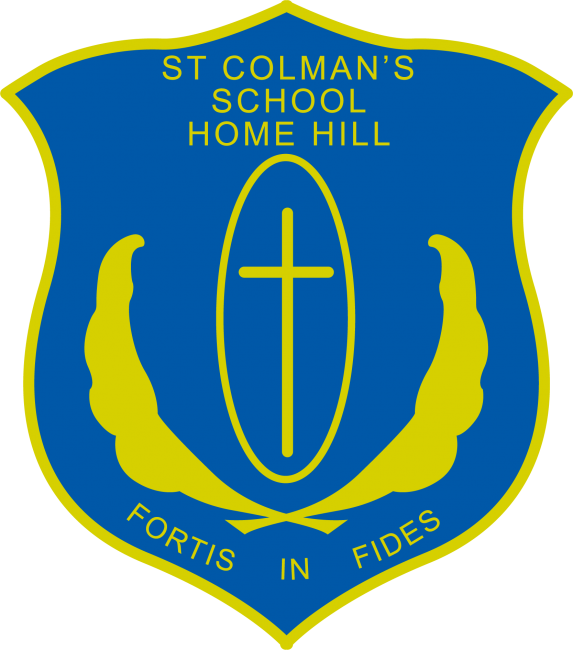 St Colman's School, Home Hill