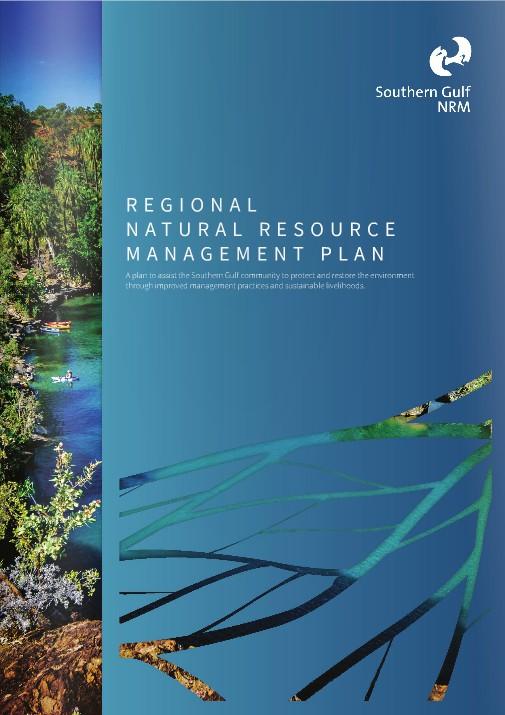 NRM plan cover image