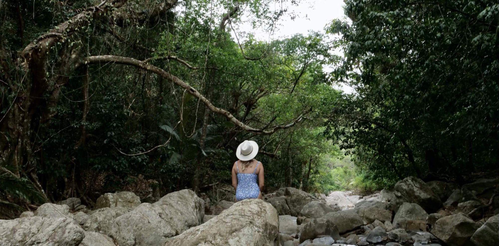 Reef to Rainforest