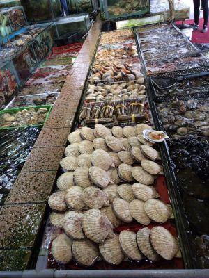 Sai Kung fishing village, Hong Kong. What seafood for dinner ??