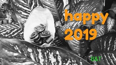 Wishing Everyone a Happy and Healthy 2019...