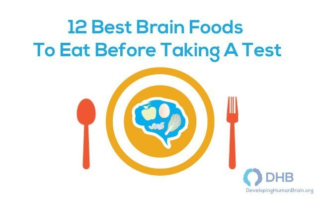 Best Brain Foods To Eat Before Taking A Test1