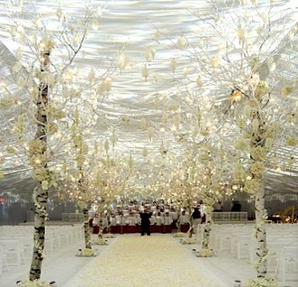 white wedding aisle trees winter
