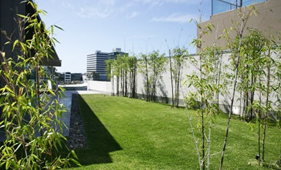 spaces zengarden Events At Cutting Edge Brisbane