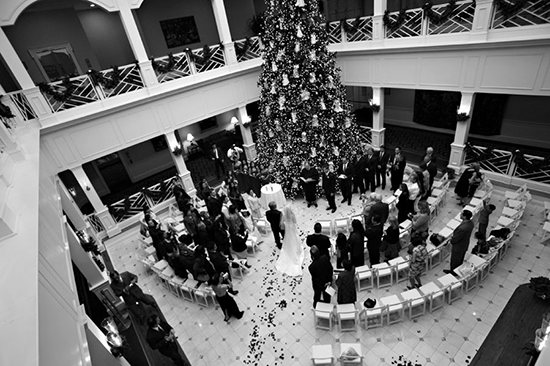 Christmas Wedding Snapshot Sunday O Christmas Tree
