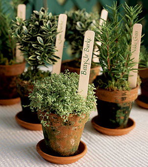 herbs A Herbalicious Wedding