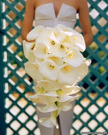 calla spr00 xl White Wedding Flowers